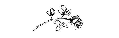 589f664e556627c3f4550ef748f26c53_imagen-descubierto-por-m-u-r-p-h-descubre-y-guarda-tus-small-rose-drawing-tumblr_500-500.jpg
